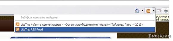 Подписка через Internet Explorer